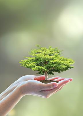 환경의 발전